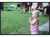 11_nohejbal-21.8.2010--98.jpg