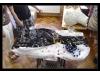 26_vytvarna-svinna-9.7.2011--36.jpg