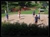 28_svinna-volejbal--27.8.2011--12.jpg