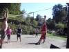 30_svinna-volejbal--1.10.2011--17.jpg