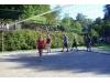30_svinna-volejbal--1.10.2011--27.jpg